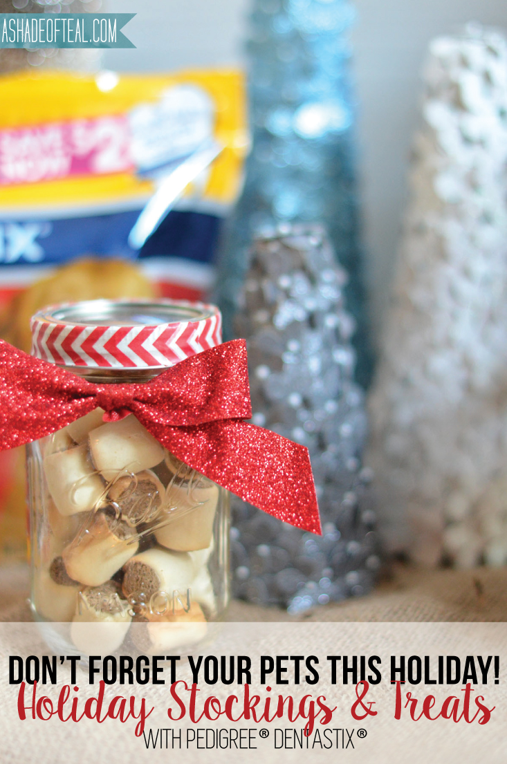Christmas Treat Stockings For Dogs