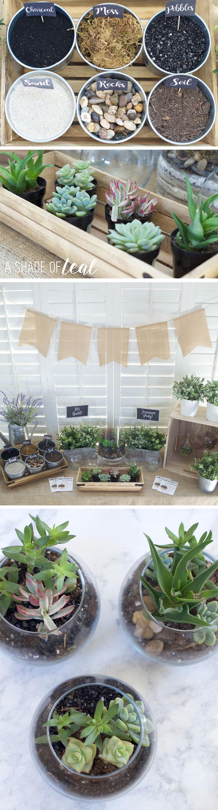 terrarium party plus how to make a terrarium a shade