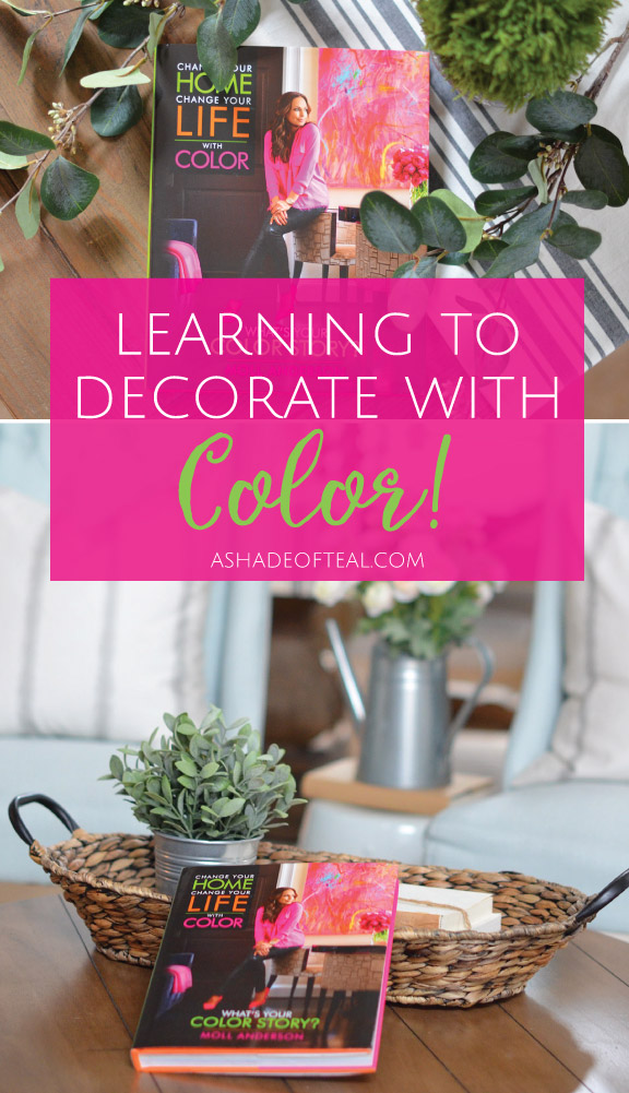 Learning To Decorate With Color