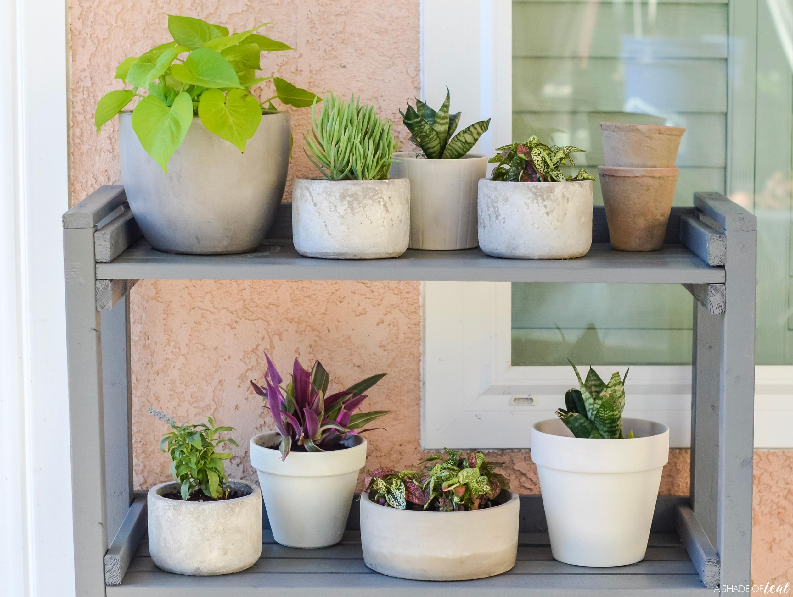 Diy How To Make A Outdoor Plant Shelf